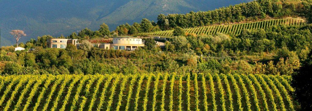 villa-raiano-winery-