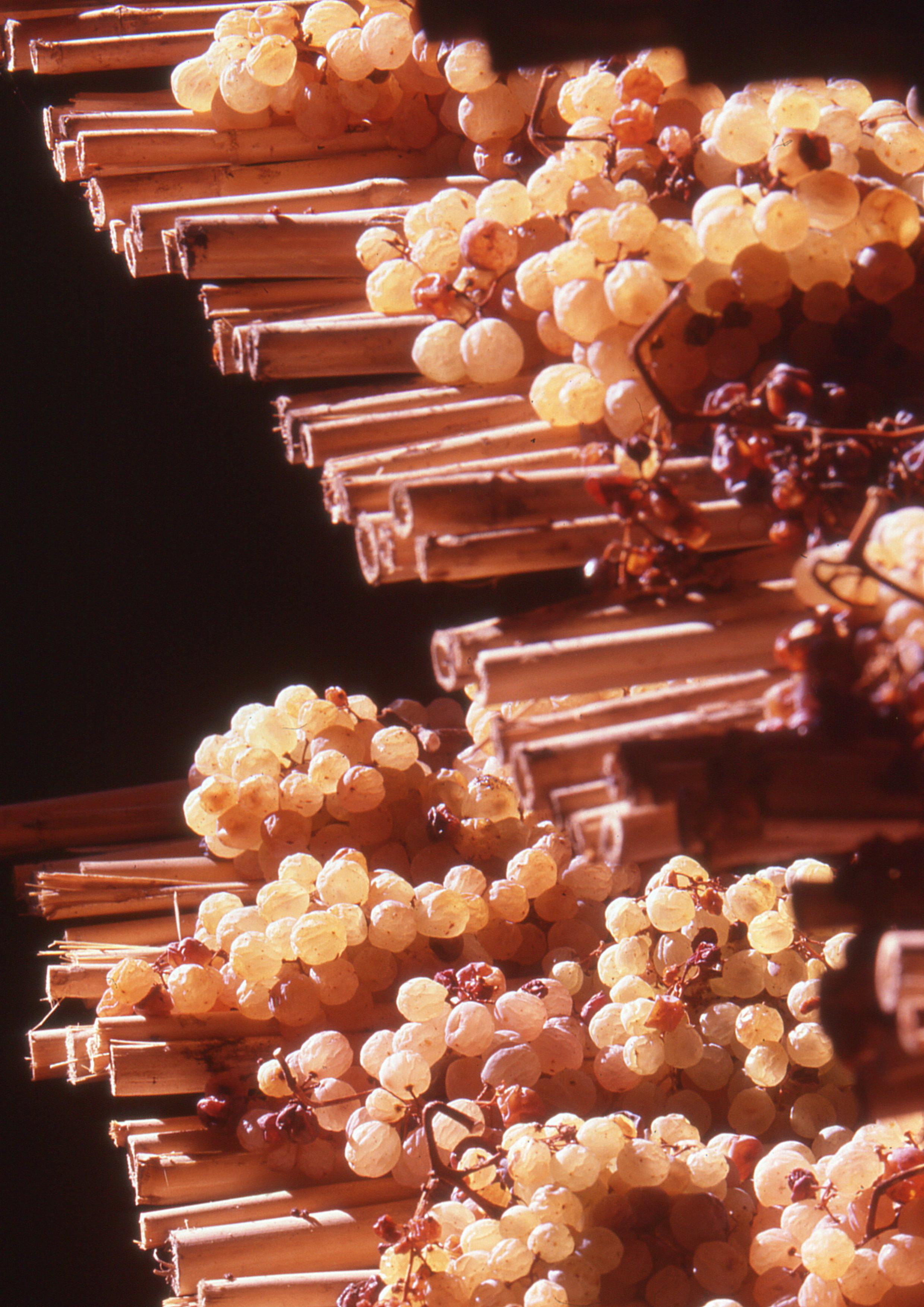 Montelorri Vin Santo
