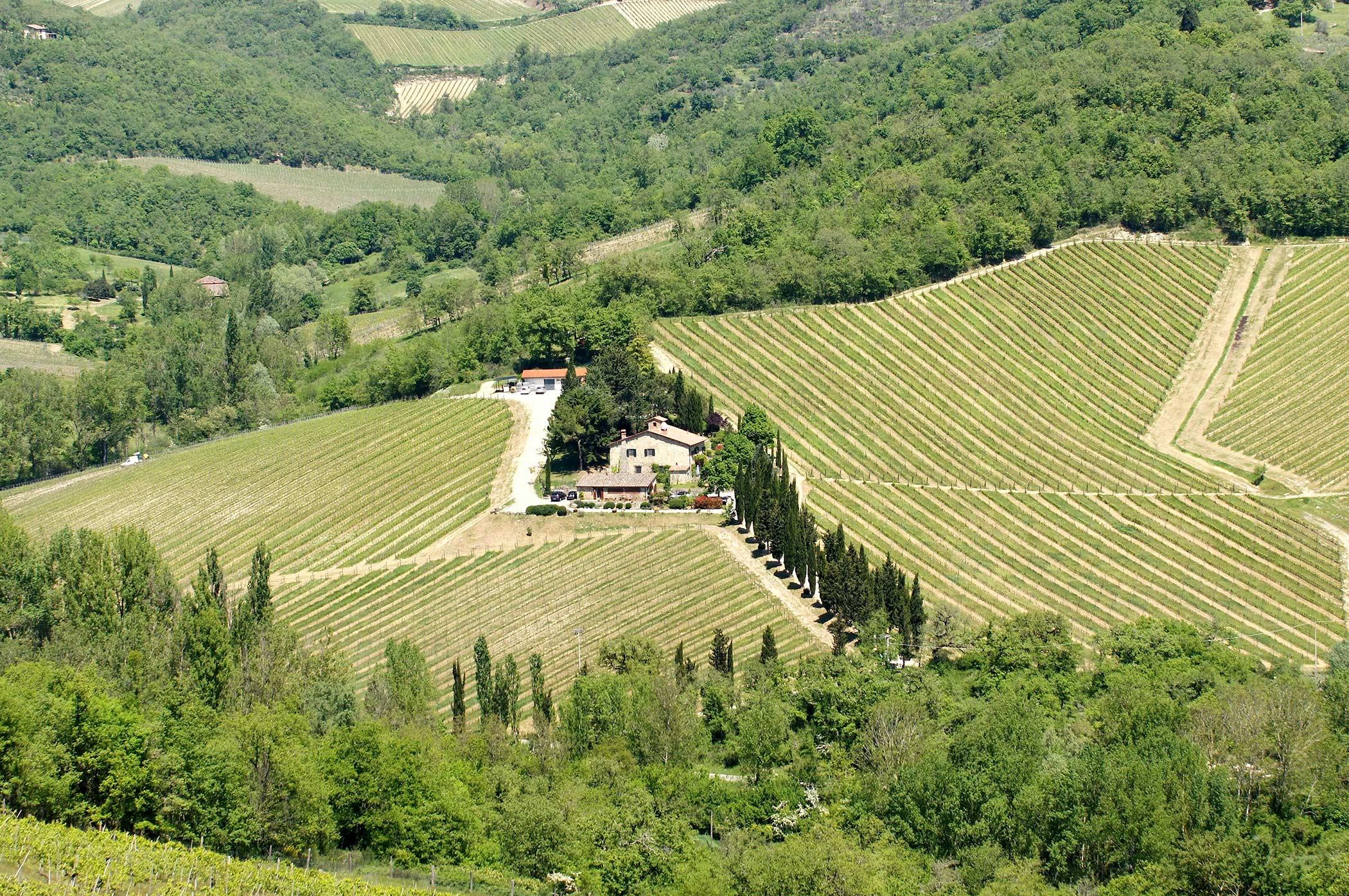Le Miccine Winery