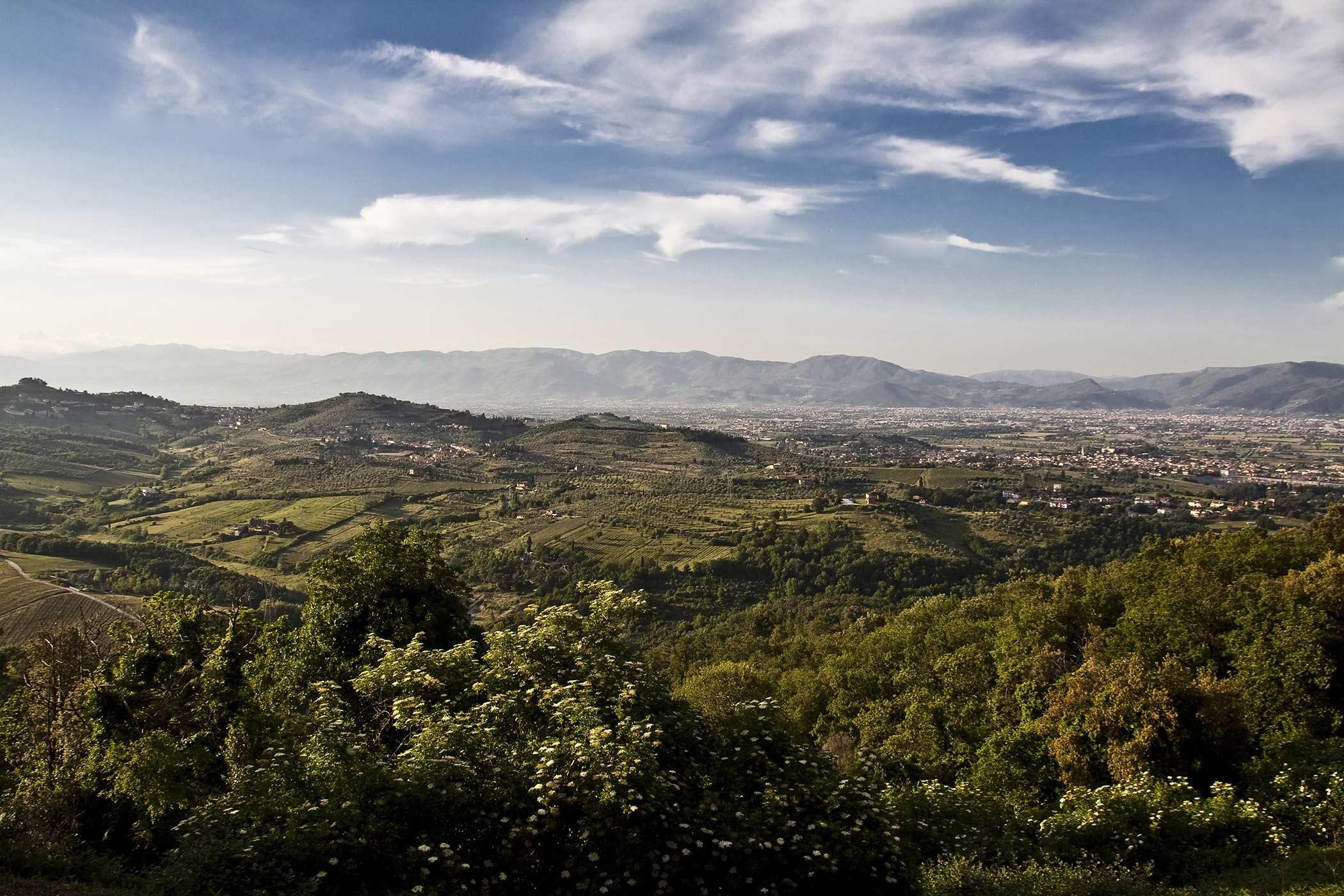 Villa Artimino / Claudia